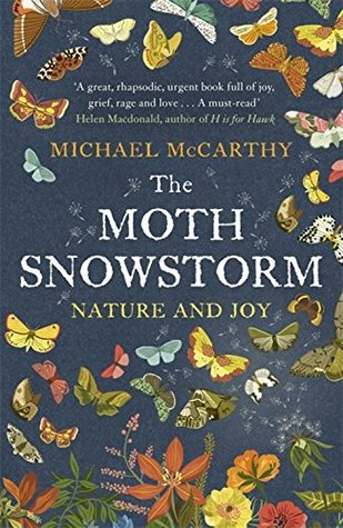 moth-snowstorm