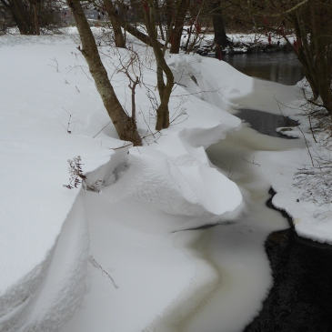 Drifts by a local stream.